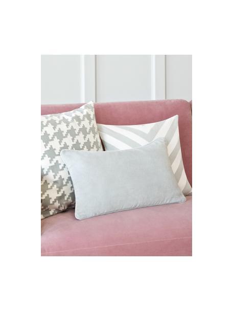 Funda de cojín de terciopelo Dana, 100%terciopelo de algodón, Gris claro, An 30 x L 50 cm