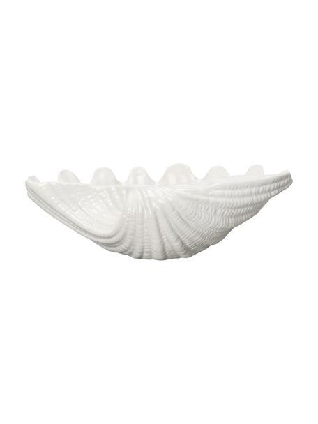 Servierschale Shell aus Dolomit in Weiß in Muschelform, B 34 cm, Dolomit, Weiß, 34 x 10 cm