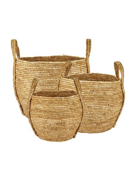 Set de cestas Zee, 3uds., Fibra natural, Beige, Set de diferentes tamaños