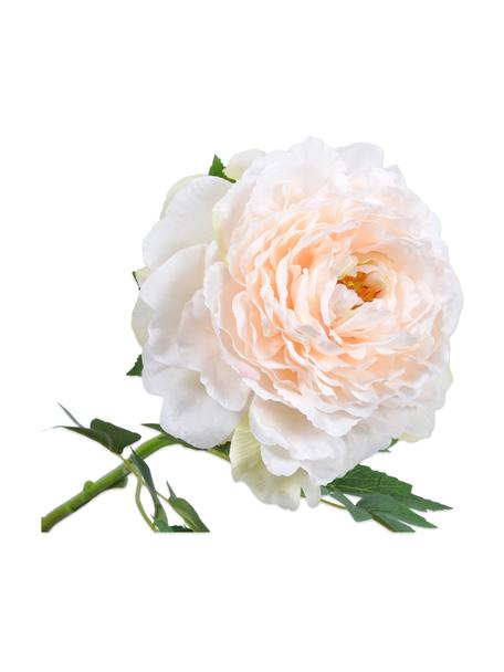 Flor artificial Pfingstrose, Plástico, alambre de metal, Blanco, rosa, L 61 cm