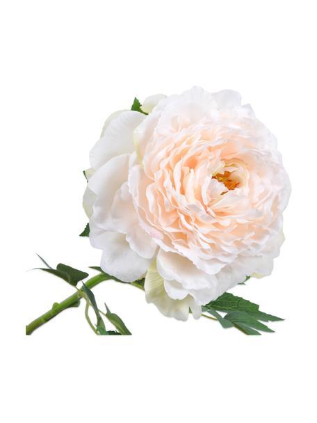 Kunstblume Pfingstrose, Weiß/Rosa, Kunststoff, Metalldraht, Weiß, Rosa, L 61 cm