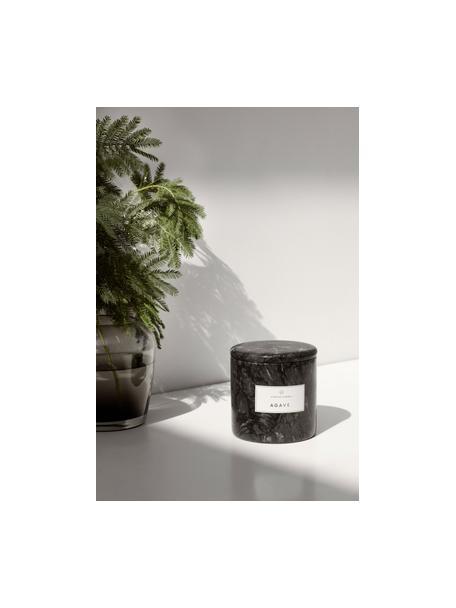 Geurkaars Frable (agave), Houder: marmer, Grijs, Ø 10 x H 11 cm