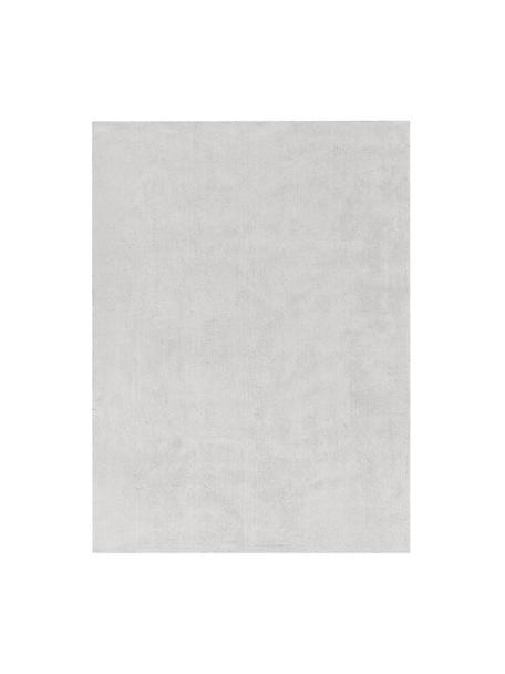 Flauschiger Hochflor-Teppich Leighton in Hellgrau, Flor: Mikrofaser (100% Polyeste, Hellgrau, B 300 x L 400 cm (Größe XL)