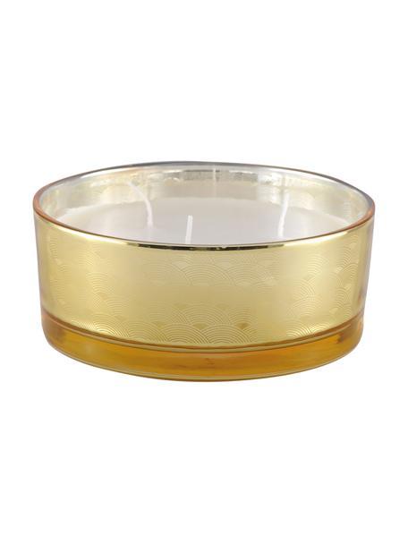 Świeca z trzema knotami Sunny (wanilia), Odcienie bursztynowego, transparentny, odcienie złotego, Ø 15 x W 6 cm