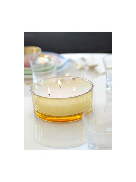 3-lonts kaars Sunny (vanille), Houder: glas, Amberkleurig, transparant, goudkleurig, Ø 15 x H 6 cm