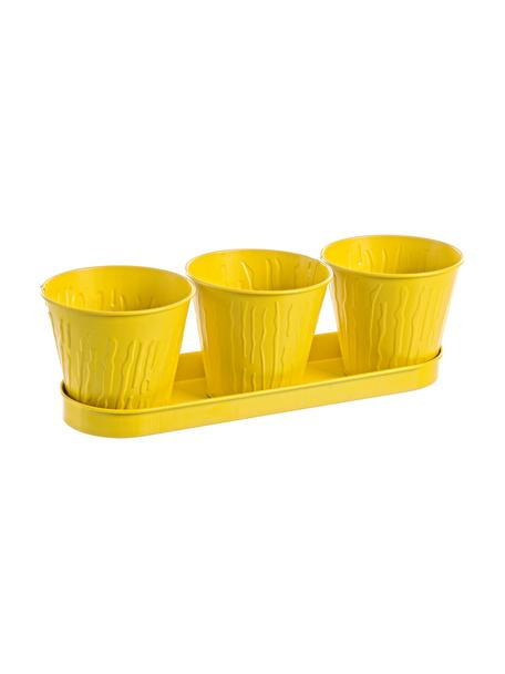 Komplet małych osłonek na doniczkę Bark, 4 elem., Metal powlekany, Żółty, Komplet z różnymi rozmiarami