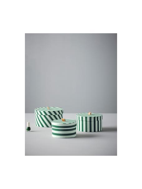 Komplet pudełek do przechowywania Dizzy, 3 elem., Tektura, Zielony, Komplet z różnymi rozmiarami