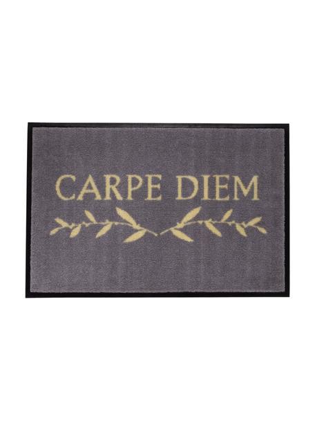 Zmywalna wycieraczka z poliamidu Carpe Diem, Szary, beżowy, S 50 x D 75 cm