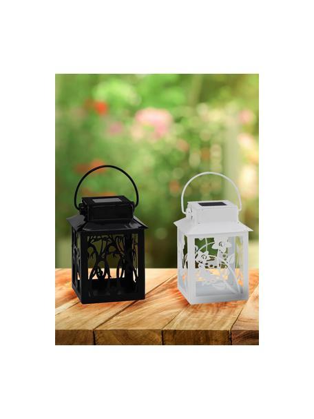 Solar Aussenleuchten Garden-Lantern, 4-tlg., Leuchte: Metall, beschichtet, Mehrfarbig, 8 x 13 cm
