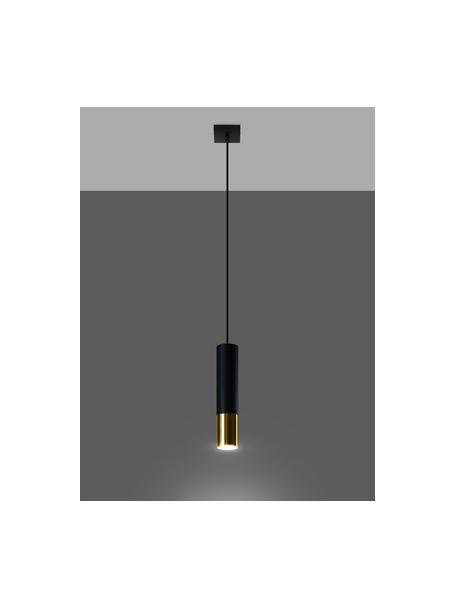 Lámpara de techo pequeña Longbot, Pantalla: acero recubierto, Anclaje: acero recubierto, Cable: plástico, Estructura: madera de roble, negro pintado Patas: dorado brillante cepillado, Ø 6 x Al 30 cm