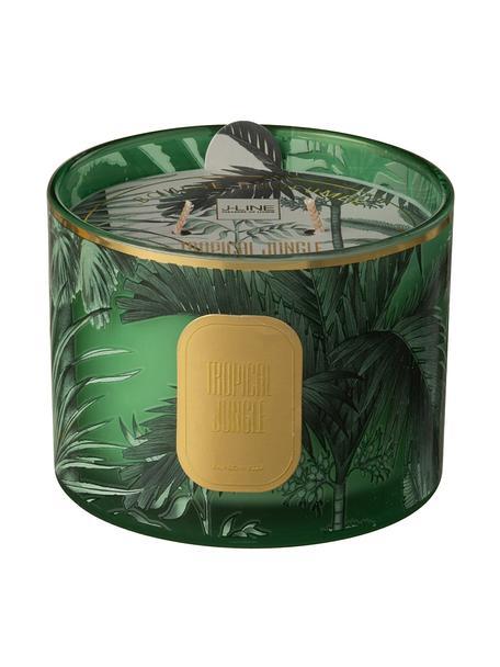 Zweidocht-Duftkerze Tropical Jungle, Behälter: Glas, Grün, Goldfarben, Ø 11 x H 8 cm