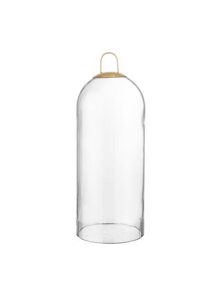 Cloche in vetro Hibba, Vetro, Trasparente, Ø 12 x Alt. 32 cm