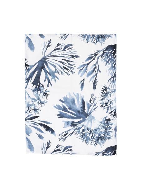 Paños de cocina Bay, 2uds., 100%algodón, Blanco, azul, An 50 x L 70 cm