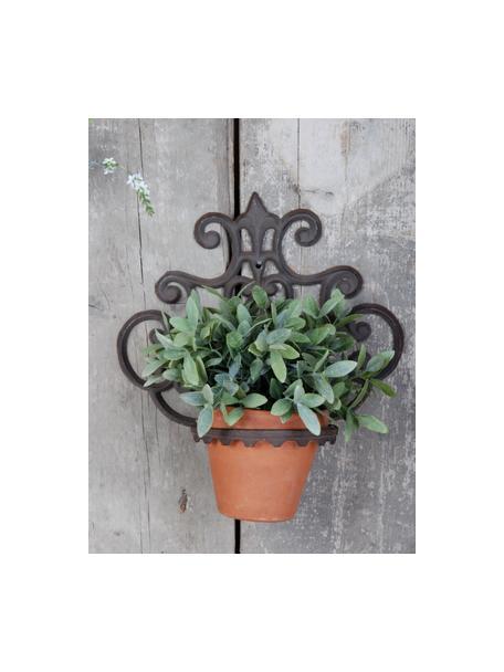 Wandplantenpothouder Marina, Gecoat metaal, Bruin, 30 x 32 cm