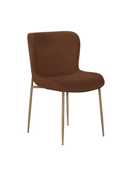Samt-Polsterstuhl Tess in Braun, Bezug: Samt (Polyester) Der hoch, Beine: Metall, pulverbeschichtet, Samt Braun, Gold, 49 x 84 cm