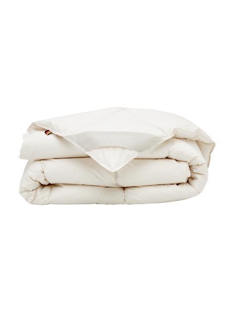 Bettdecke Premium aus Bio-Daunen und Bio-Baumwolle, mittel, Bezug: 100% Bio-Baumwolle, GOTS , mittel, 135 x 200 cm