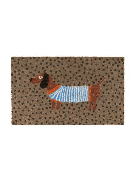 Felpudo Sausage Dog, Parte superior: fibras de coco, Reverso: plástico (PVC), Multicolor, An 45 x L 75 cm