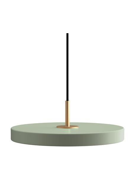 Lámpara de techo LED de diseño Asteria, Pantalla: aluminio recubierto, Anclaje: polipropileno, Cable: cubierto en tela, Verde oliva, Ø 31 x Al 11 cm
