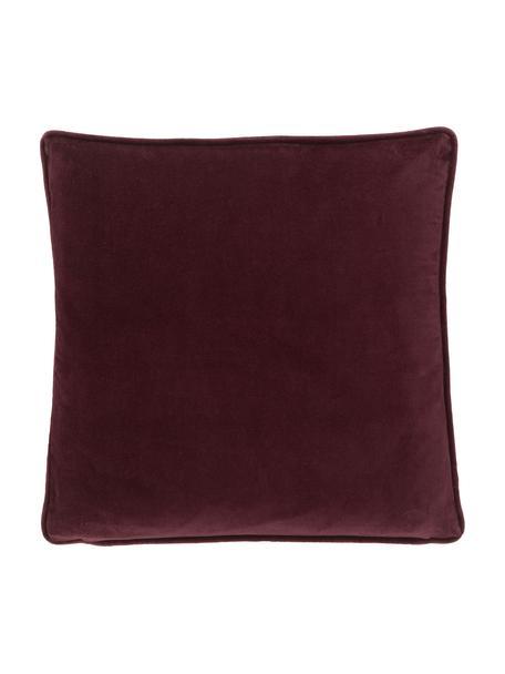 Effen fluwelen kussenhoes Dana in bordeauxrood, 100% katoenfluweel, Rood, 40 x 40 cm