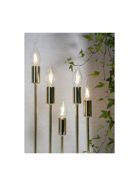 E14 Leuchtmittel, 1.5W, warmweiss, 5 Stück, Leuchtmittelschirm: Glas, Leuchtmittelfassung: Aluminium, Transparent, Ø 4 x H 12 cm