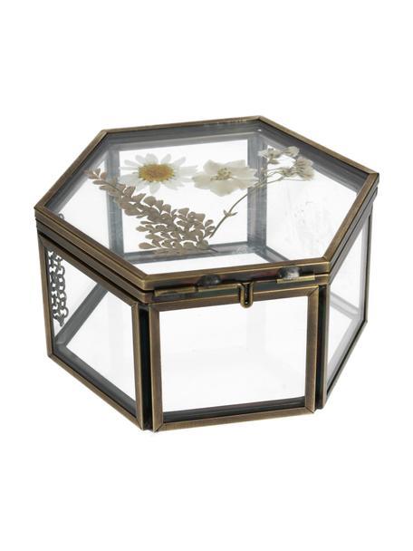 Aufbewahrungsbox Dried Flowers, Rahmen: Metall, beschichtet, Gold, Transparent, 11 x 5 cm