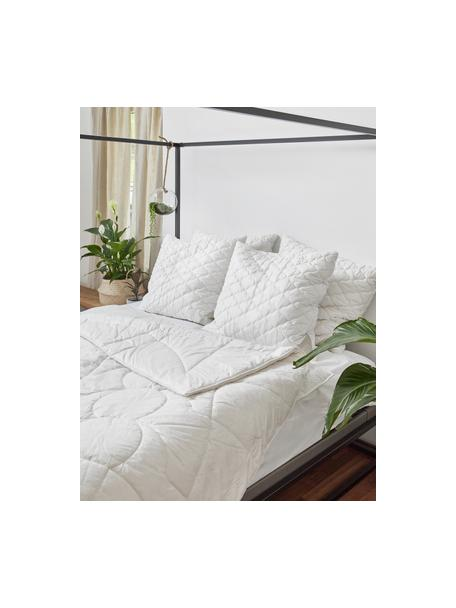 Vegane Bettdecke mit Kapokfaser und Baumwolle, leicht, Bezug: 100% Baumwolle, leicht, 135 x 200 cm
