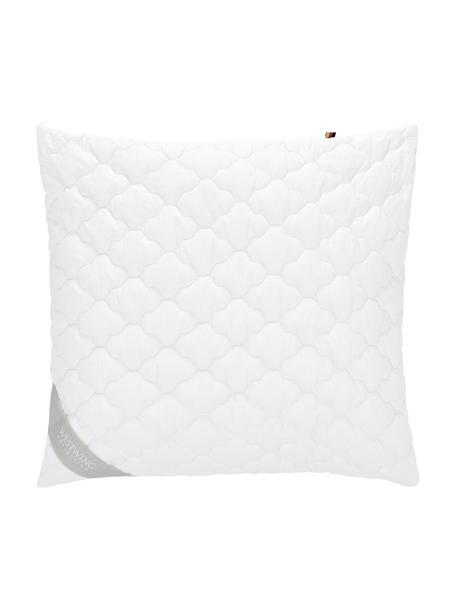 Wegańska poduszka z kapoka i bawełny Comfort, miękka, Tapicerka: 100% bawełna, Biały, S 80 x D 80 cm