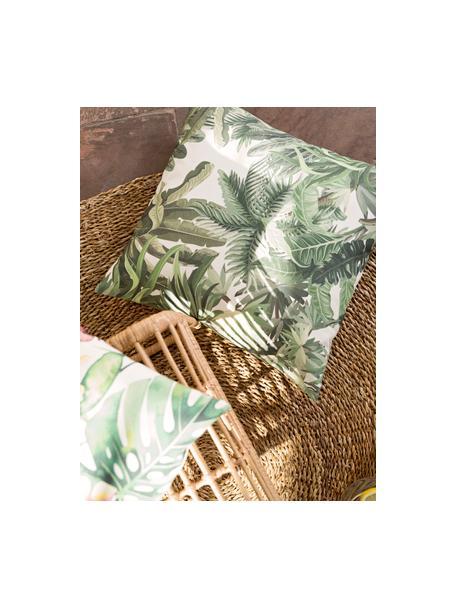 Federa arredo da esterno con motivo tropicale Manus, 100% Dralon® poliacrilico, Tonalità verdi, color crema, Larg. 50 x Lung. 50 cm
