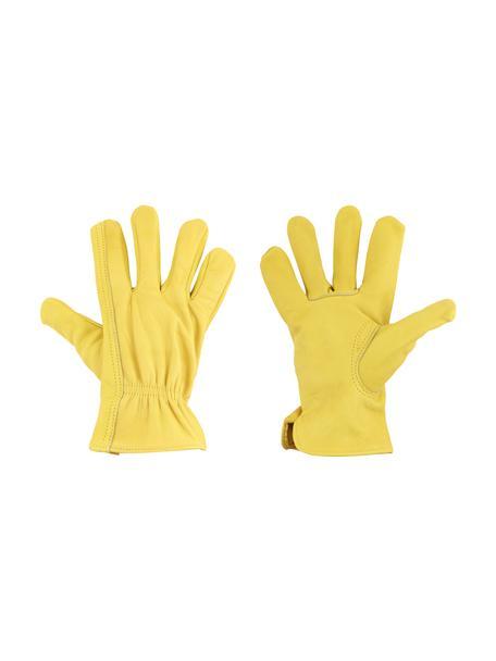 Rękawice ogrodnicze ze skóry bydlęcej Selma, Skóra bydlęca, Żółty, S 13 x D 23 cm