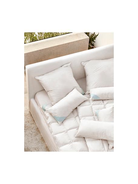 Feder-Kopfkissen Comfort, weich, Hülle: 100% Baumwolle, Mako-Fein, Weiß mit türkiser Satinbiese, 40 x 80 cm