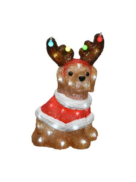 Dekoracja świetlna LED z wtyczką Dog, Tworzywo sztuczne, Brązowy, wielobarwny, S 23 x W 34 cm