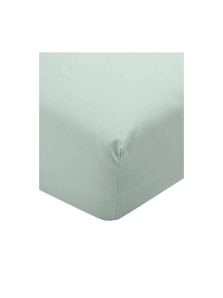 Prześcieradło z gumką z perkalu Elsie, Szałwiowy zielony, S 90 x D 200 cm