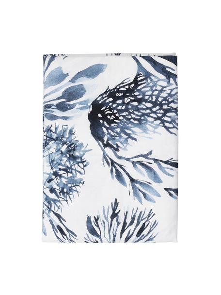 Tovaglia in cotone con motivo coralli Bay, 100% cotone, Bianco, blu, Per 4-6 persone (Larg. 160 x Lung. 160 cm)