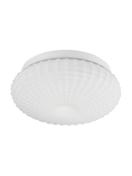 Kleine plafondlamp Clam van glas, Lampenkap: glas, Baldakijn: gecoat staal, Wit, Ø 30 x H 12 cm