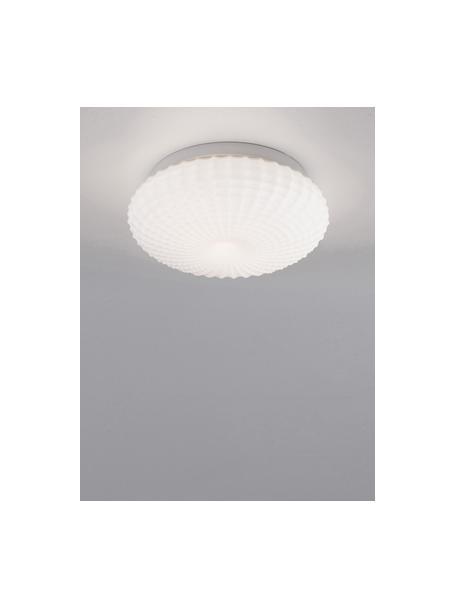 Plafón pequeño de vidrio Clam, Pantalla: vidrio, Anclaje: acero recubierto, Blanco, Ø 30 x Al 12 cm