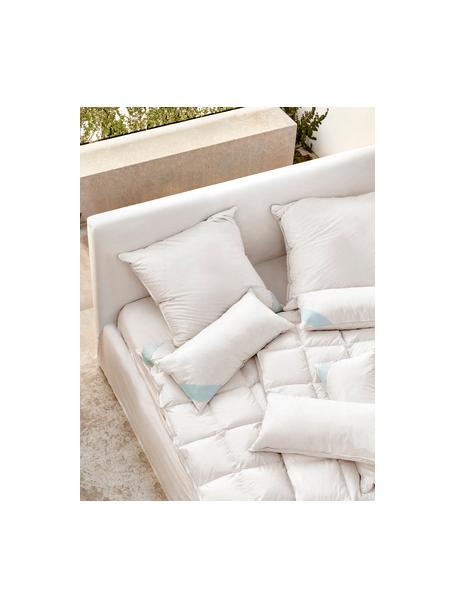Reine Daunen-Bettdecke Premium, leicht, Hülle: 100% Baumwolle, feine Mak, leicht, 135 x 200 cm