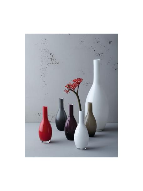 Vaso in vetro fatto a mano Beauty, Vetro, Grigio, Ø 14 x Alt. 39 cm