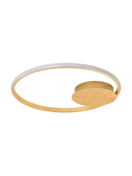 Dimbare LED plafondlamp Fuline in goudkleur, Lampenkap: metaal, Baldakijn: metaal, Diffuser: acryl, Goudkleurig, Ø 50 x H 5 cm