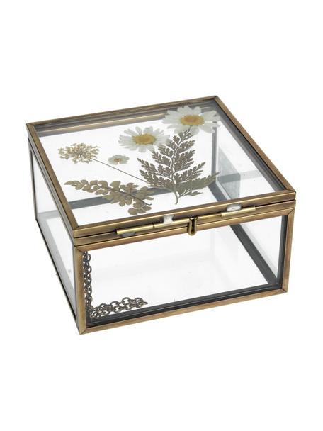 Aufbewahrungsbox Dried Flowers, Rahmen: Metall, beschichtet, Gold, Transparent, 10 x 6 cm