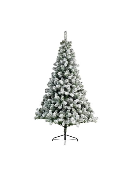 Árbol de Navidad artificial North Pole, Verde, blanco, Ø 97 x Al 150 cm