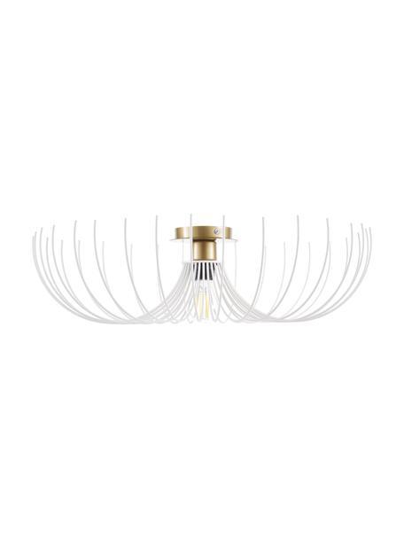 Plafondlamp Aspendos van metaal, Baldakijn: gecoat metaal, Wit, messingkleurig, Ø 56 x H 16 cm