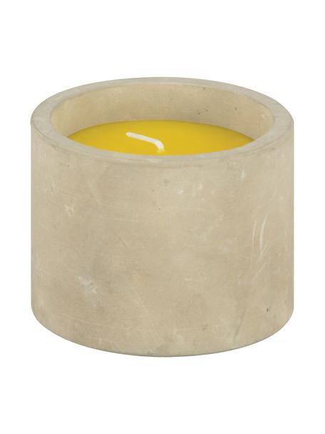 Anti-muggenkaars Alan, Houder: beton, Geel, Ø 9 x H 7 cm