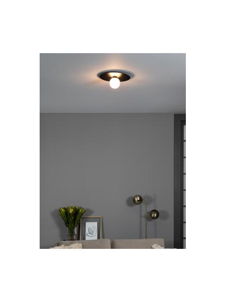 Applique da parete e soffitto in vetro Lobero, Baldacchino: metallo rivestito, Paralume: vetro opale, Nero, bianco, Ø 30 x Alt. 13 cm
