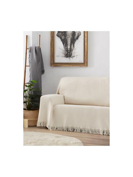 Copridivano multifunzionale Amazonas, 80% cotone, 20% altre fibre, Verde grigio, Larg. 180 x Prof. 260 cm