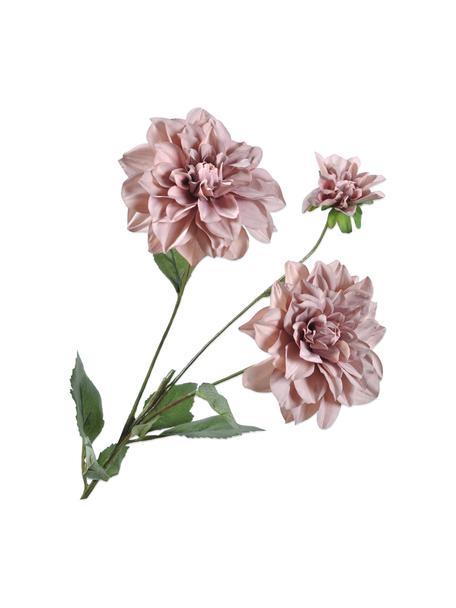 Flores artificiales Dahlien, 2uds., Plástico, alambre de metal, Rosa palo, L 75 cm