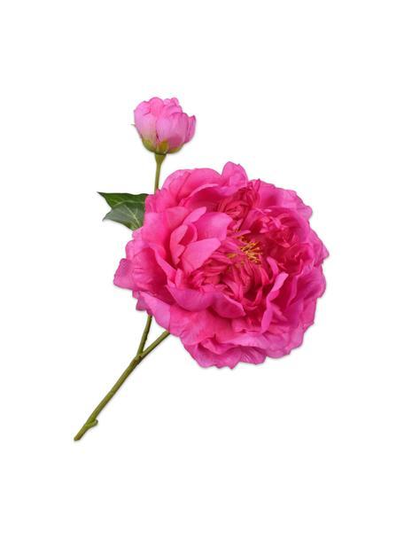 Kunstblume Pfingstrose, Pink, Kunststoff, Metalldraht, Pink, L 60 cm