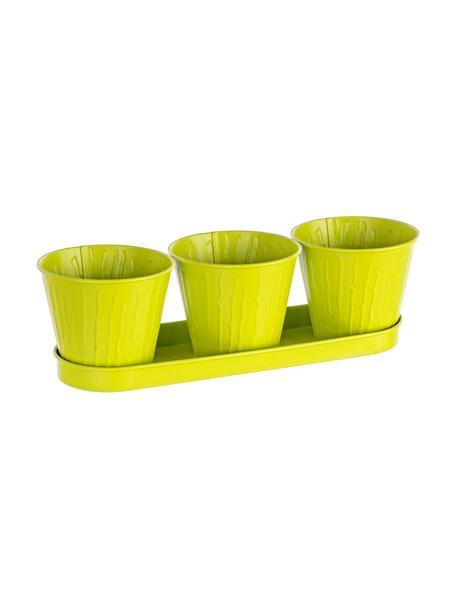 Set de maceteros pequeños Bark, 4pzas., Metal recubierto, Verde limón, Set de diferentes tamaños