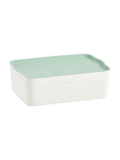 Aufbewahrungsbox Mintho, Kunststoff, Mintgrün, 45 x 14 cm