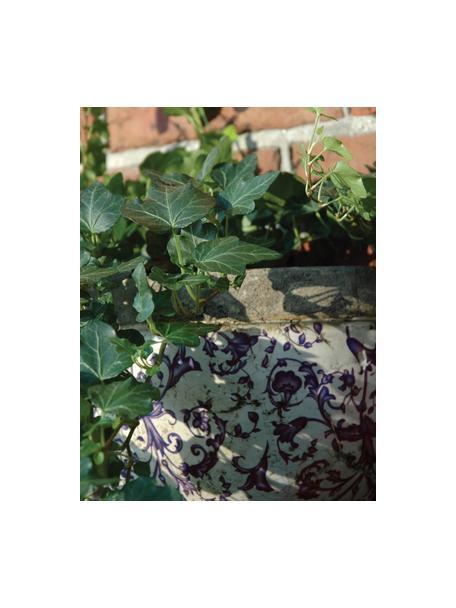 Portavaso da parete Cerino, Ceramica, Blu, bianco, Larg. 28 x Alt. 18 cm