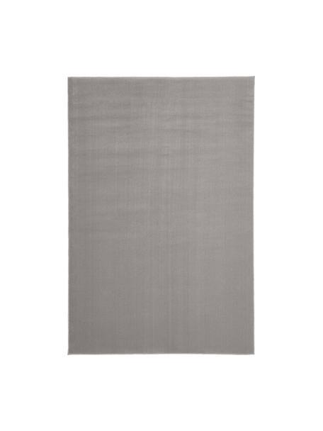 Wollteppich Ida in Grau, Flor: 100% Wolle, Grau, B 200 x L 300 cm (Größe L)